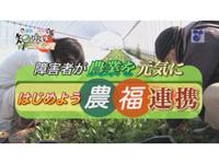 徳光・木佐の知りたいニッポン!~障害者が農業を元気に はじめよう 農福連携