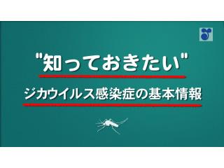 """""""知っておきたい""""ジカウイルス感染症の基本情報"""
