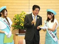 茨城県鉾田市長及びほこたブランド大使等による表敬-平成29年6月7日