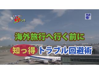 徳光・木佐の知りたいニッポン~海外旅行に行く前に 知っ得 トラブル回避術(19分44秒)