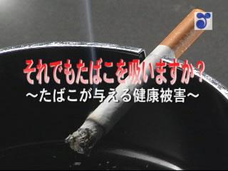 それでもたばこを吸いますか〜たばこが与える健康被害