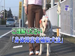 ご理解ください!身体障害者補助犬法
