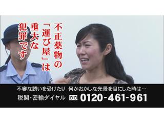 不正薬物の「運び屋」は重大な犯罪です!【CM】 - 政府インターネットテレビ