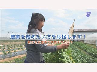 農業を始めたい方を応援します!~新たな支援策で就農をサポート