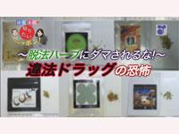 徳光&木佐の知りたいニッポン!~脱法ハーブにダマされるな!~違法ドラッグの恐怖