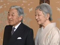 天皇陛下のお誕生日に際してのご近況(平成25年)