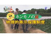 徳光・木佐の知りたいニッポン!~平成27年6月スタート ホンモノの証 地理的表示保護制度
