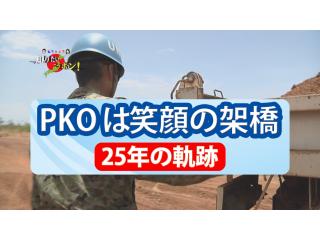 徳光・木佐の知りたいニッポン!~PKOは笑顔の架橋 25年の軌跡(19分23秒)