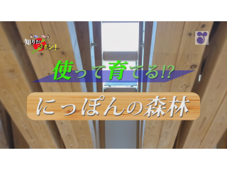 徳光・木佐の知りたいニッポン~使って育てる!?にっぽんの森林