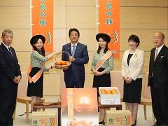 「奈良の柿」PRレディ等による表敬-平成29年11月24日