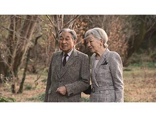 天皇陛下のお誕生日に際してのご近況(平成29年)