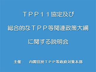 TPP11協定及び総合的なTPP等関連政策大綱に関する説明会
