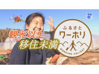 徳光・木佐の知りたいニッポン~観光以上移住未満 ふるさとワーキングホリデー