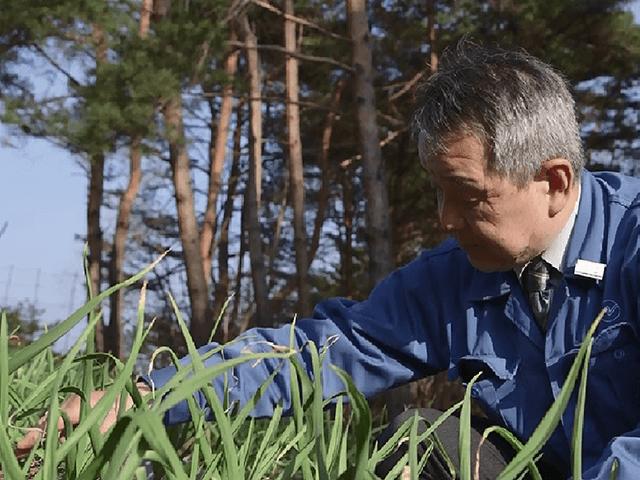 国家戦略特区の成果事例「企業による農地取得の特例」等(兵庫県養父市)