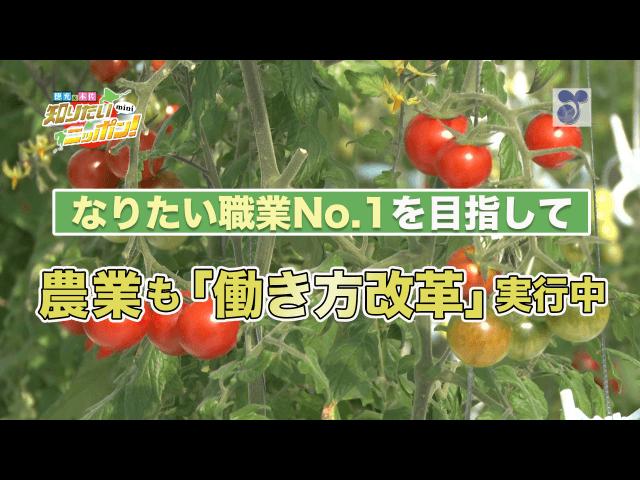 徳光・木佐の知りたいニッポン!mini~なりたい職業No.1を目指して 農業も「働き方改革」実行中