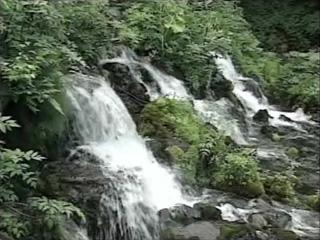 北海道遺産〜京極のふきだし湧水(北海道京極町)