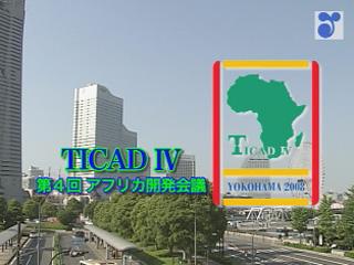 TICAD IV (第4回アフリカ開発会議)