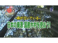 徳光&木佐の知りたいニッポン!~森が泣いている ~ 日本の資源 国産木材を使おう!